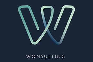 Wonsulting Logo